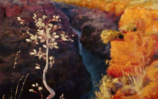 Joffre Gorge, Karijini, Western Australia, outback gorge