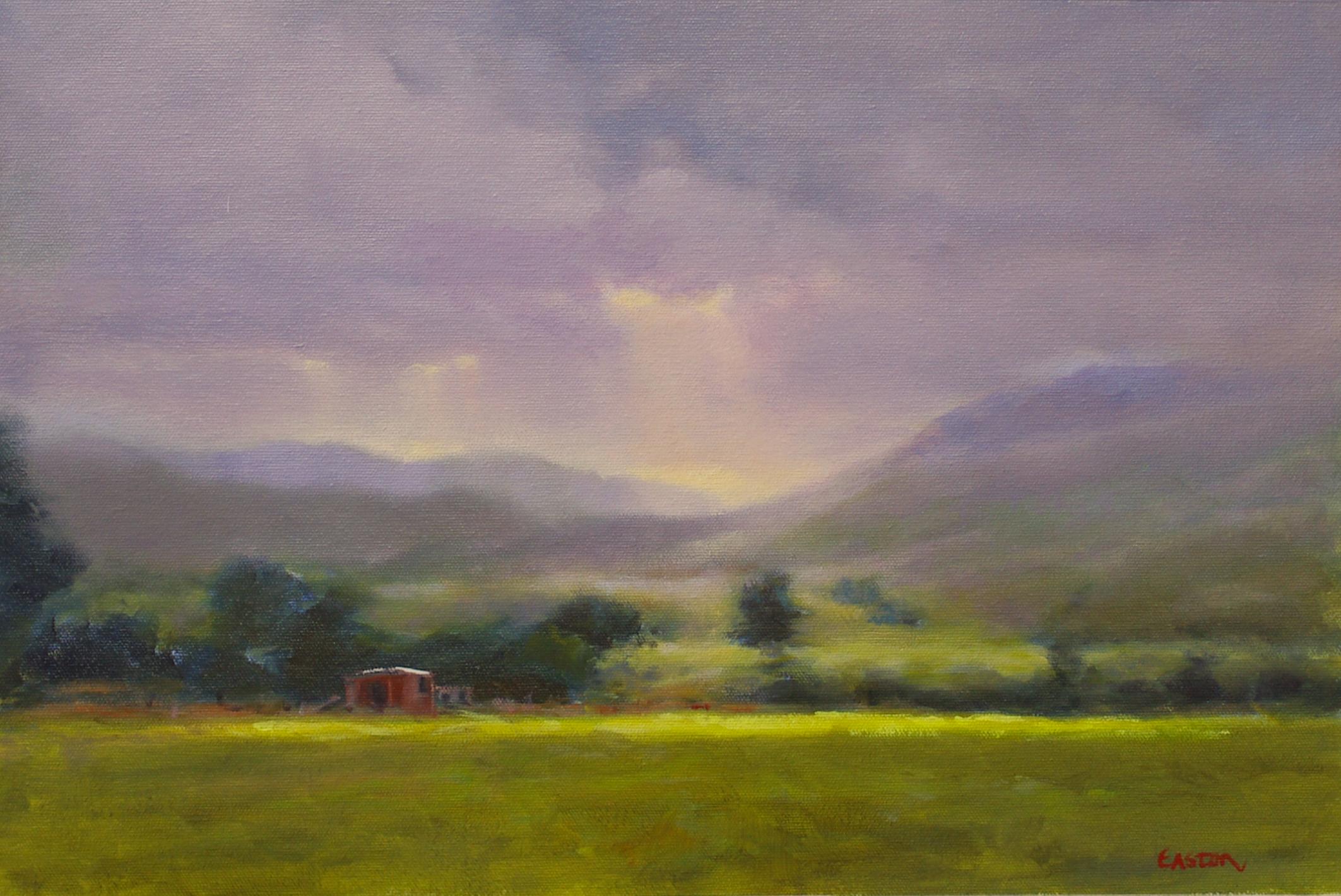 Sunlight breaking through onto hill country farmland