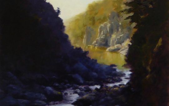 Light and shadows in Cataract Gorge, Launceston, Tasmania. Oil painting on marine ply.
