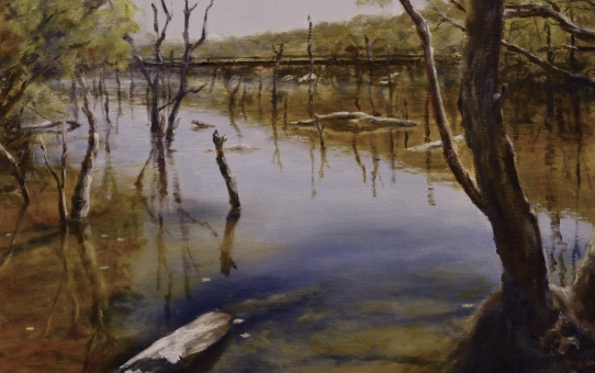 hotham river, water reflections, river painting
