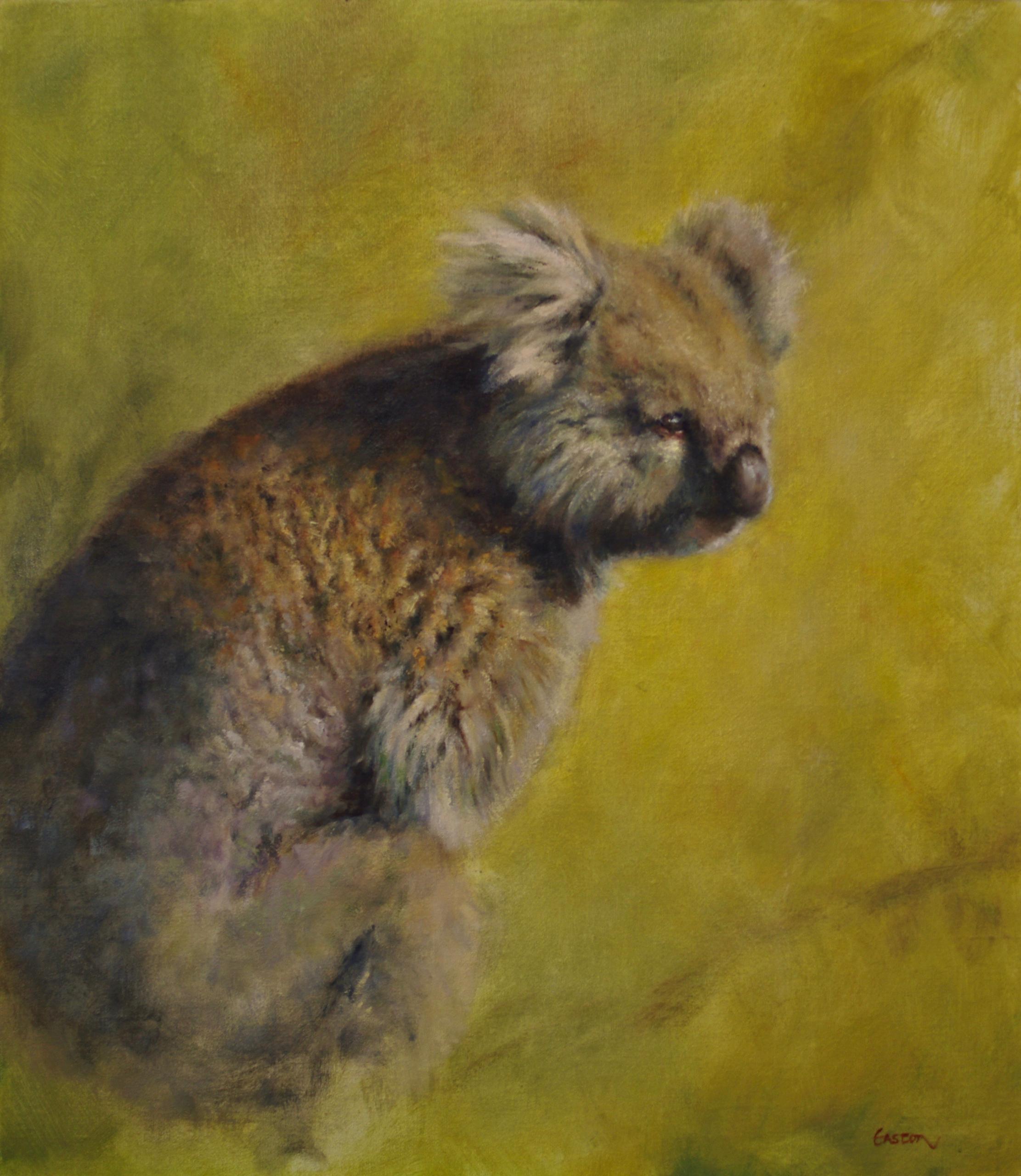 Oil painting Australian Koala