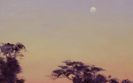 moonrise, sunset, sunrise, dawn