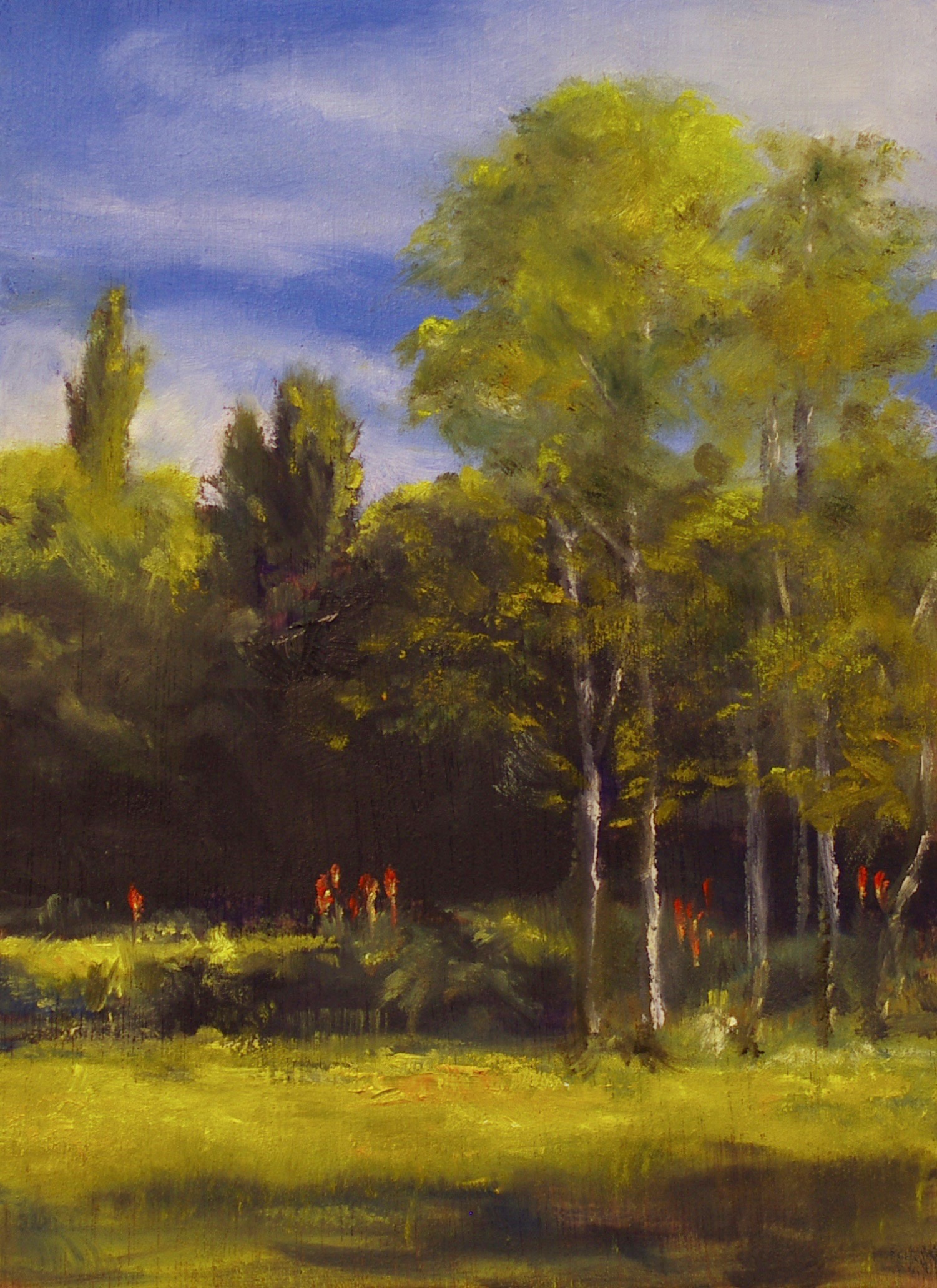 Moerere field, trees, poplars, red hot pokers, oil painting