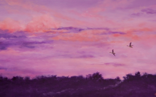 sunrise, birds flying, clouds