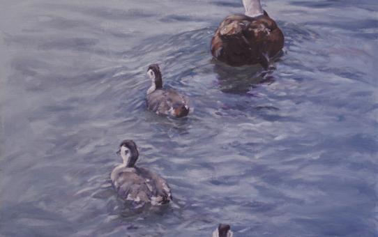 Bird painting ducks on water