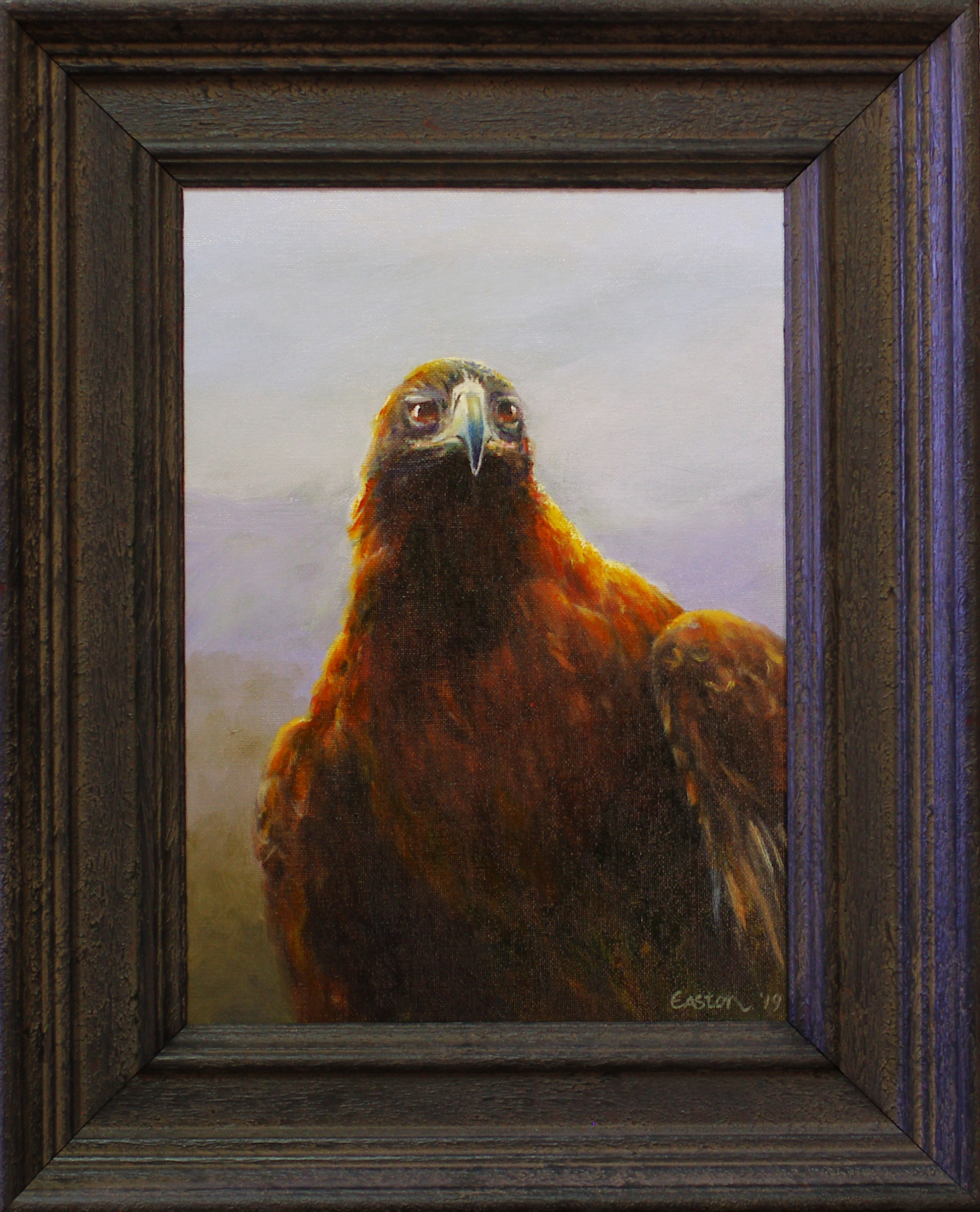Wedge-Tailed Eagle oil painting